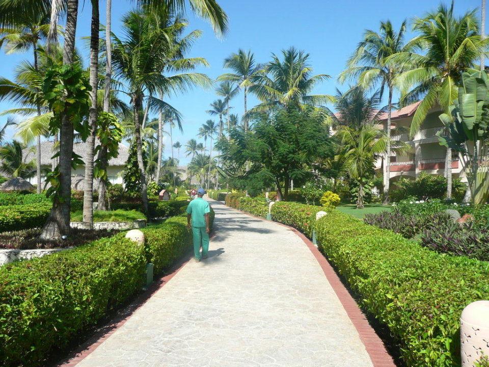 Gartenanlage Majestic Colonial Punta Cana