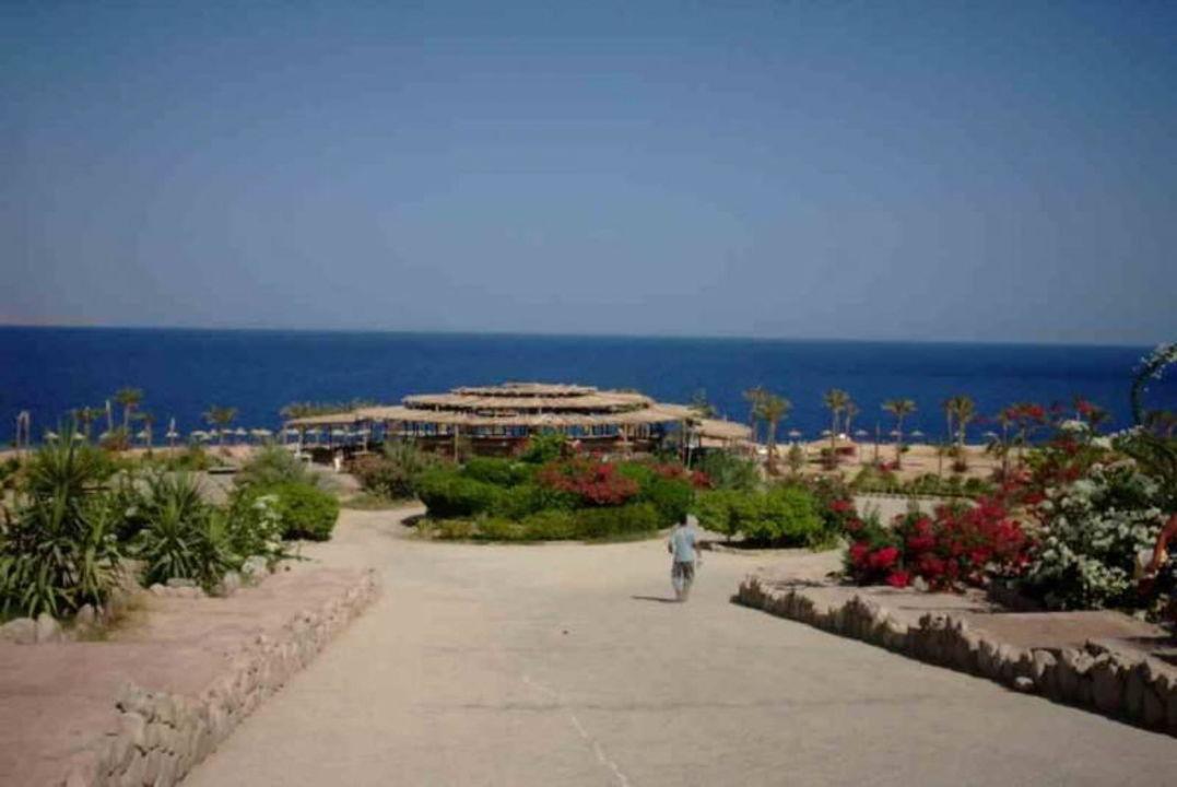 Sharm Inn  Amarein Hotel Sharm Inn Amarein
