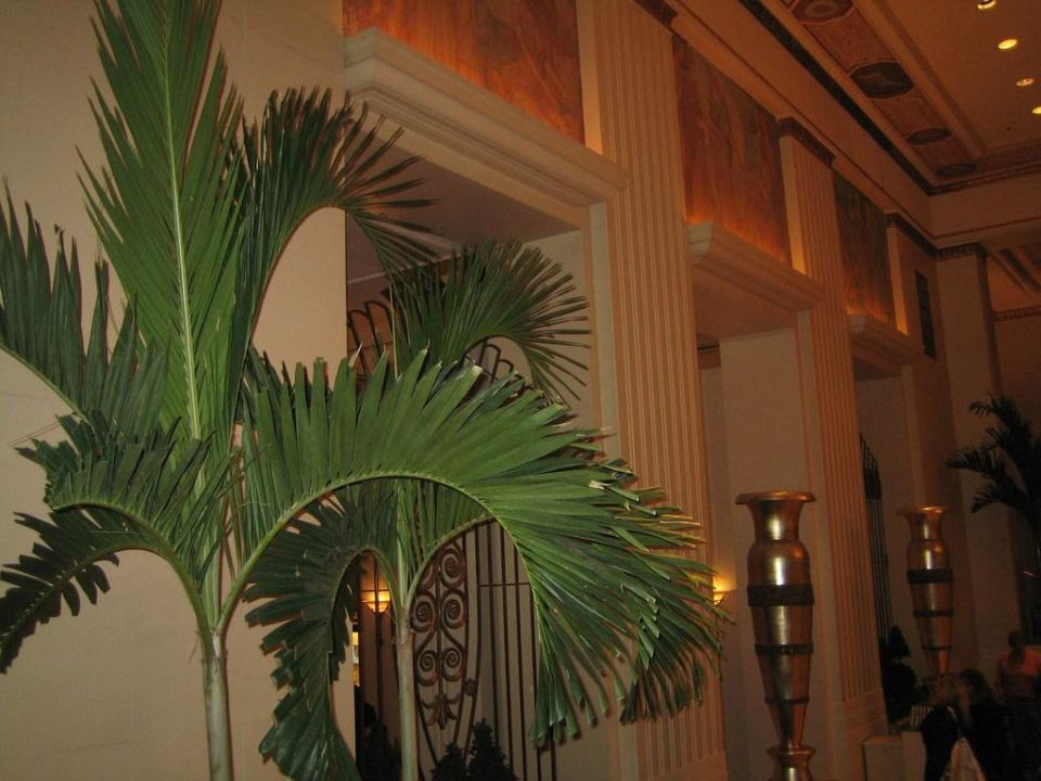 Lobby - Detail The Waldorf Astoria New York