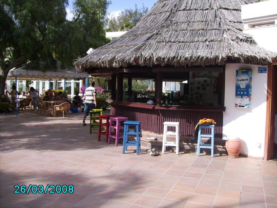 Team Animation Hotel Fuerteventura Playa