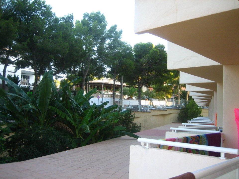 Z hotelu AluaSun Torrenova