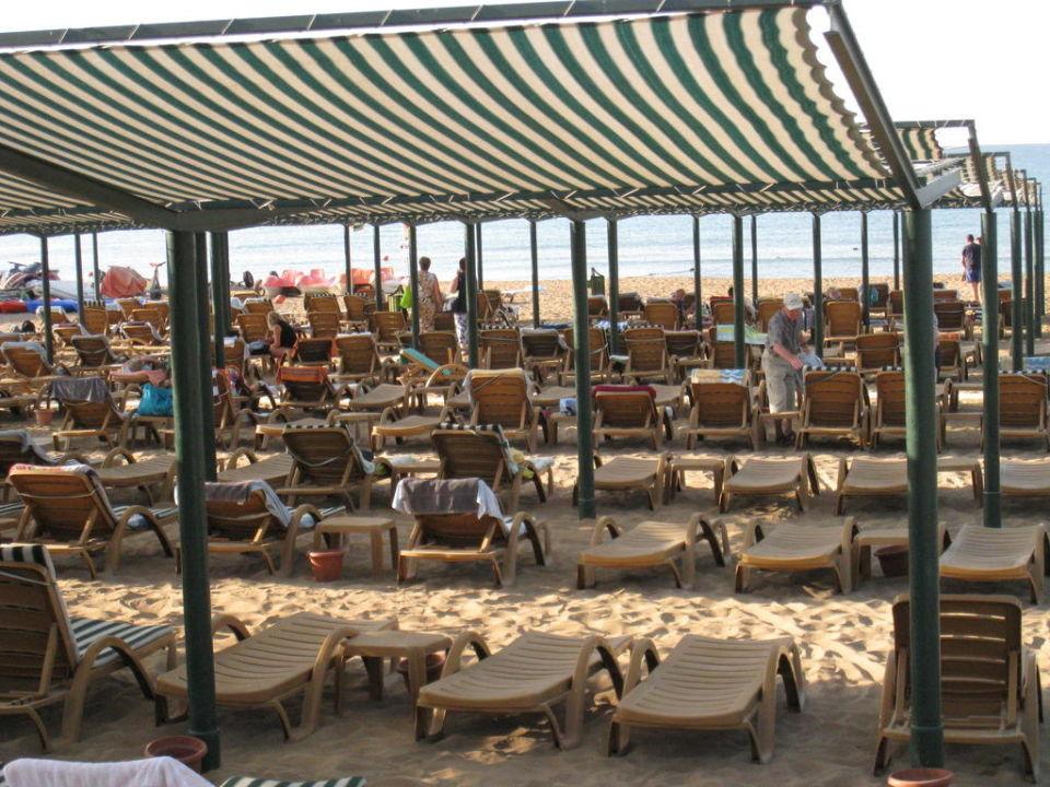 Liegen Hotel Adalya Resort & Spa