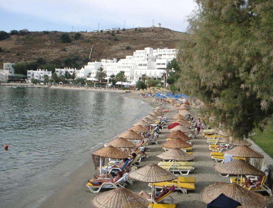 Strand vom Azka Hotel Hotel Azka