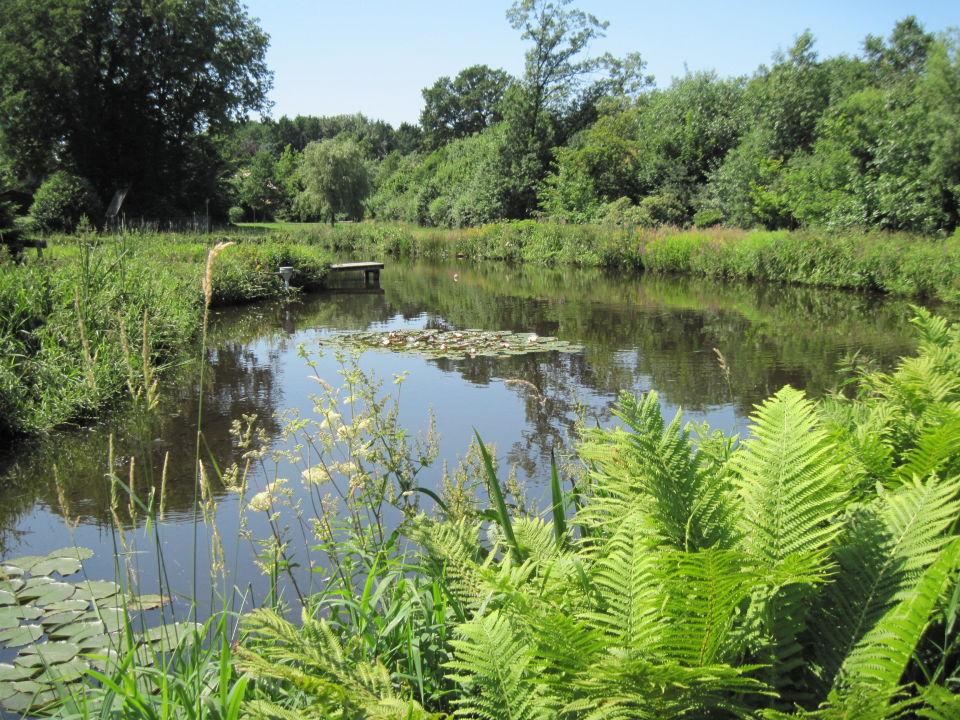 Romantischer Teich in großer Gartenanlage\