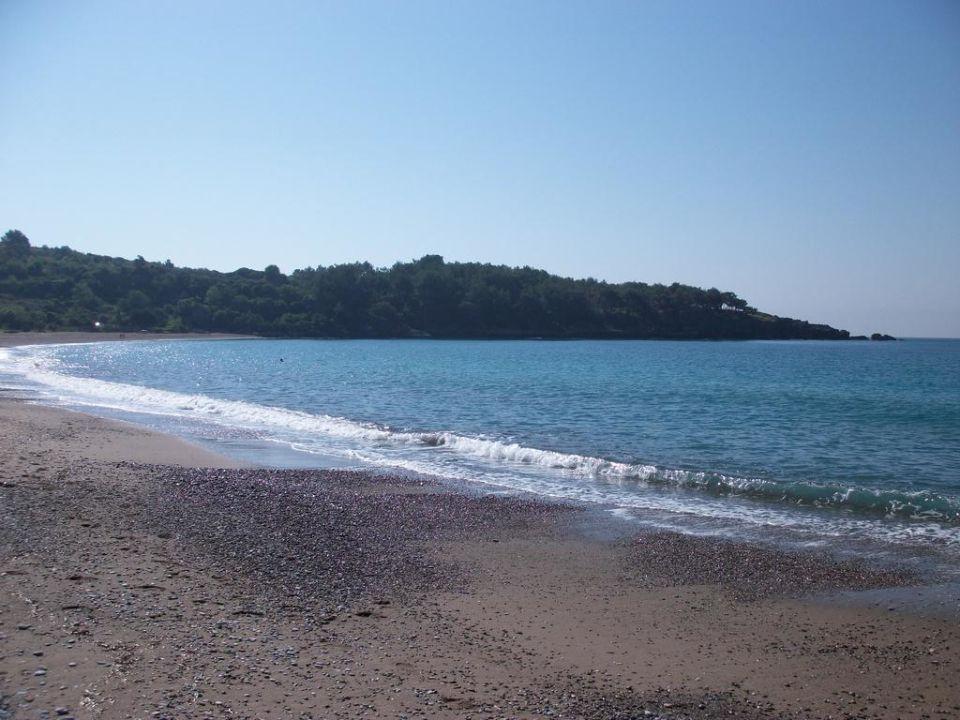 Strand Sealife Buket Resort & Beach