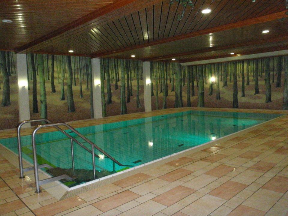 """""""Ich glaub ich bin im Wald"""" Hapimag Resort Braunlage"""