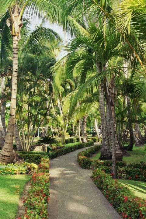 Hotelanlage Barcelo Bavaro Beach - Adults only