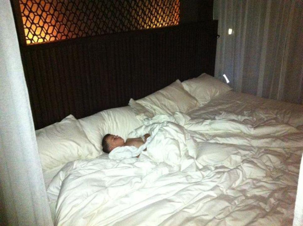 Bett 4 x 2 Meter \