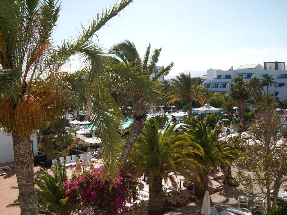 Gartenanlage vom Balkon aus gesehen Seaside Hotel Los Jameos Playa