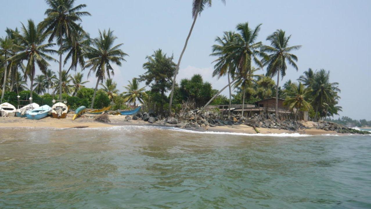 Beachboy-Treff Earl's Reef Beruwala