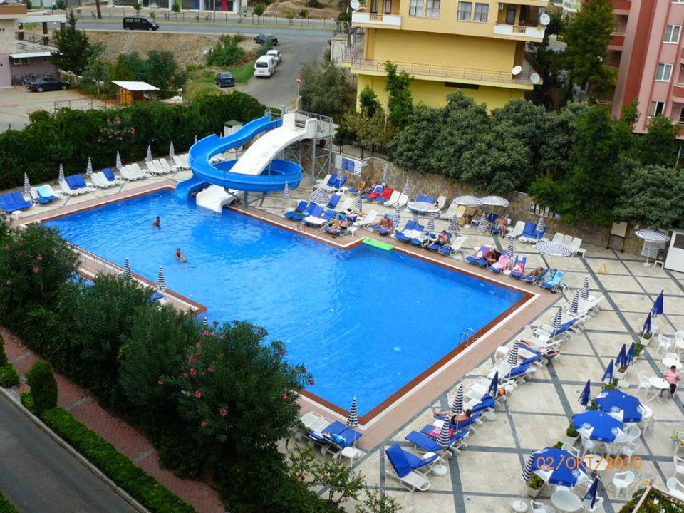 Pool Hotel Blue Star