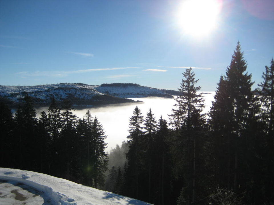 Wanderweg vom Seibelseckle zum Hotel Wellnesshotel Forsthaus Auerhahn