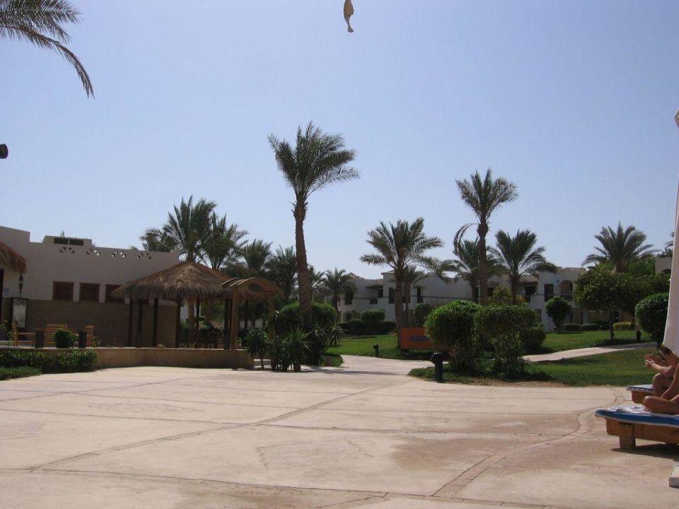 Przy basenie, obok restauracji rybnej Shores Amphoras Resort