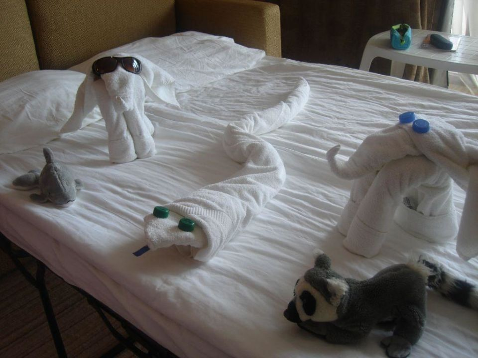 Animals HVD Clubhotel Miramar