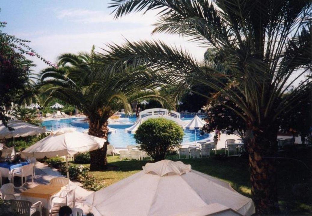 Blick vom Frühstücksraum Hotel Sol Azur