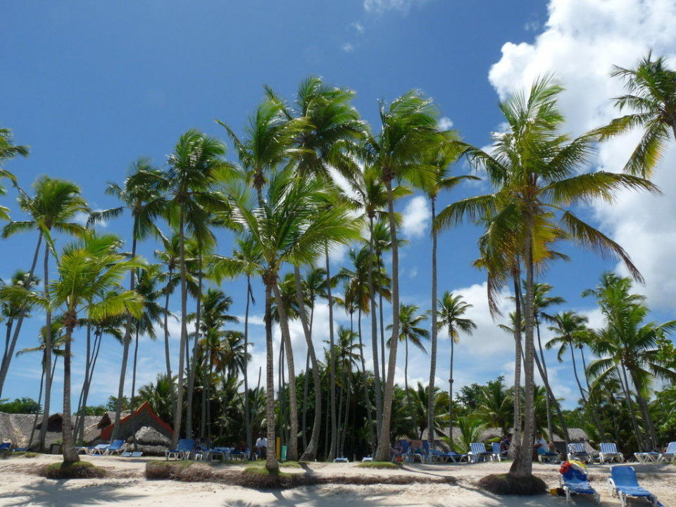Hotelstrand am Vormittag Hotel Grand Paradise Samana
