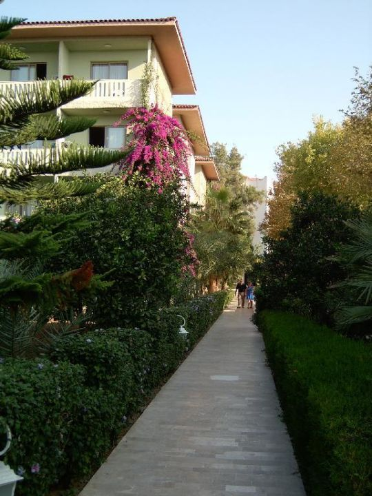 Hotel Alara Park Alara Park Hotel - All Inclusive