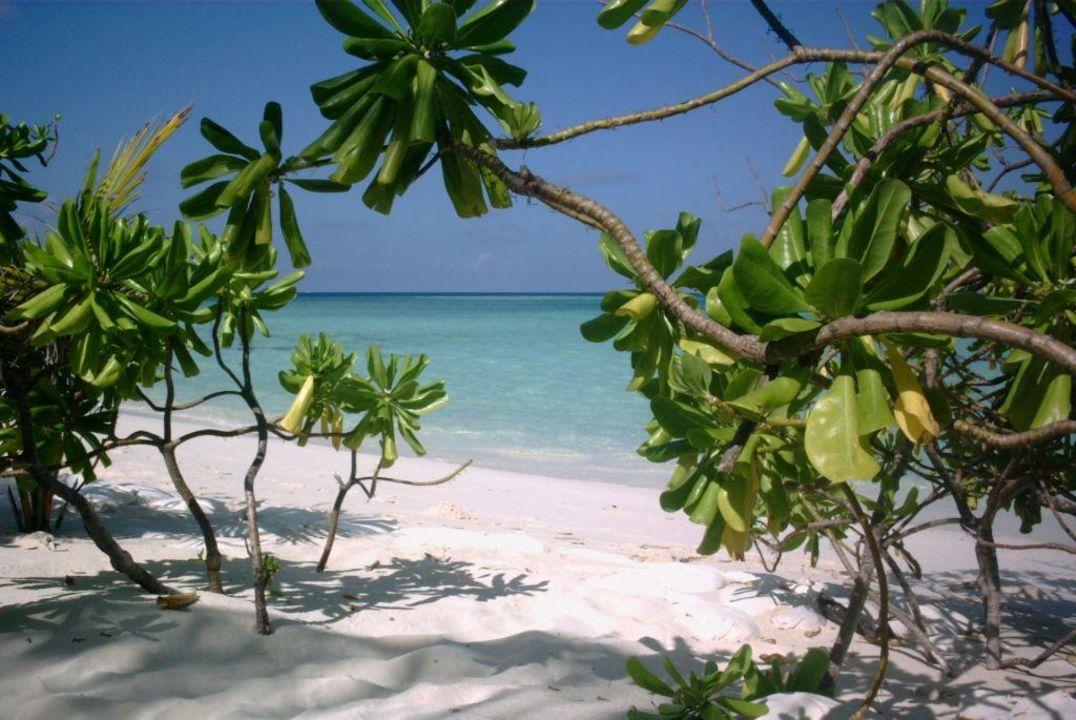 Blick auf die Lagune Maayafushi Resort