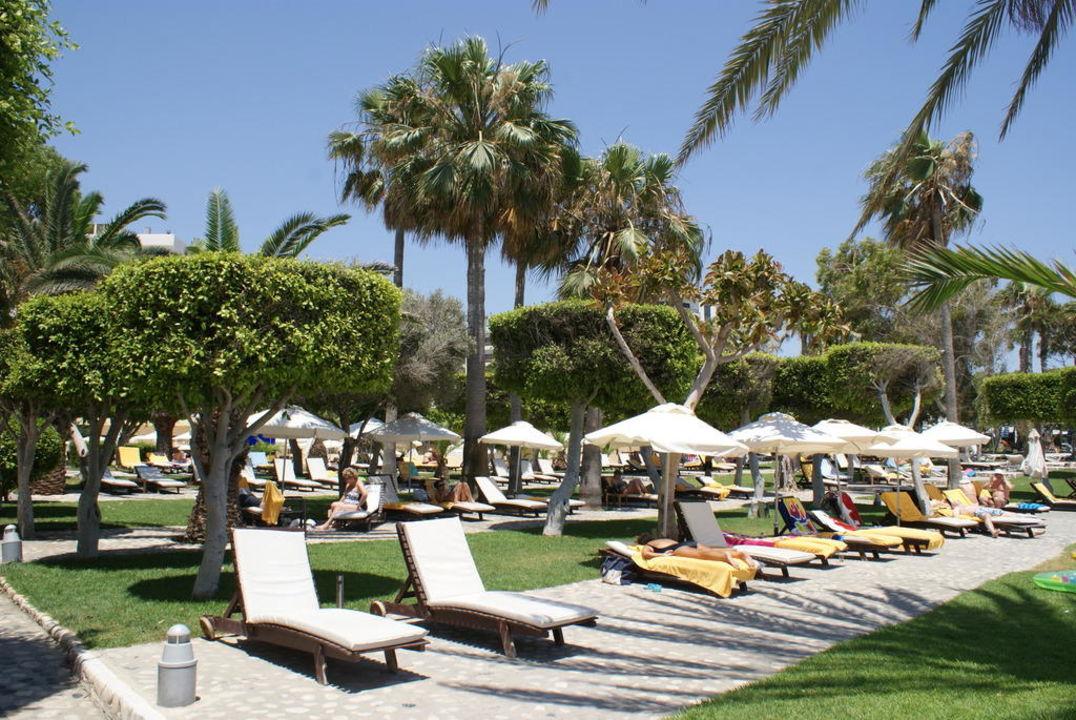 Ogród wokół basenu Elias Beach Hotel
