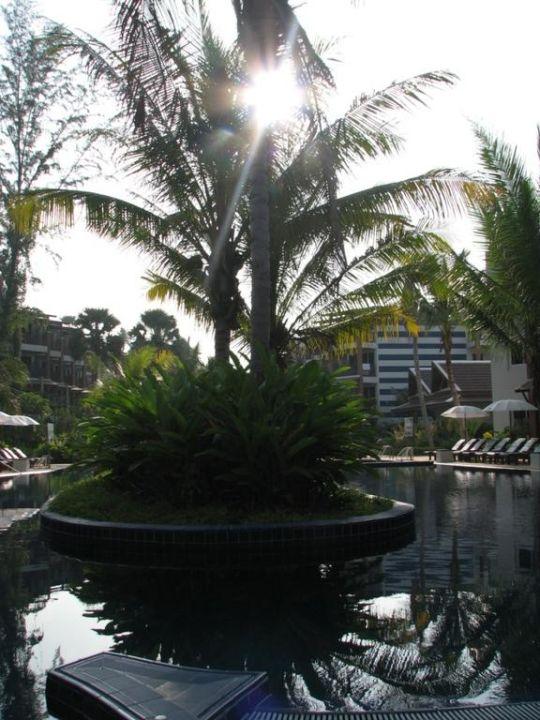 Pool Sunwing Bangtao Beach