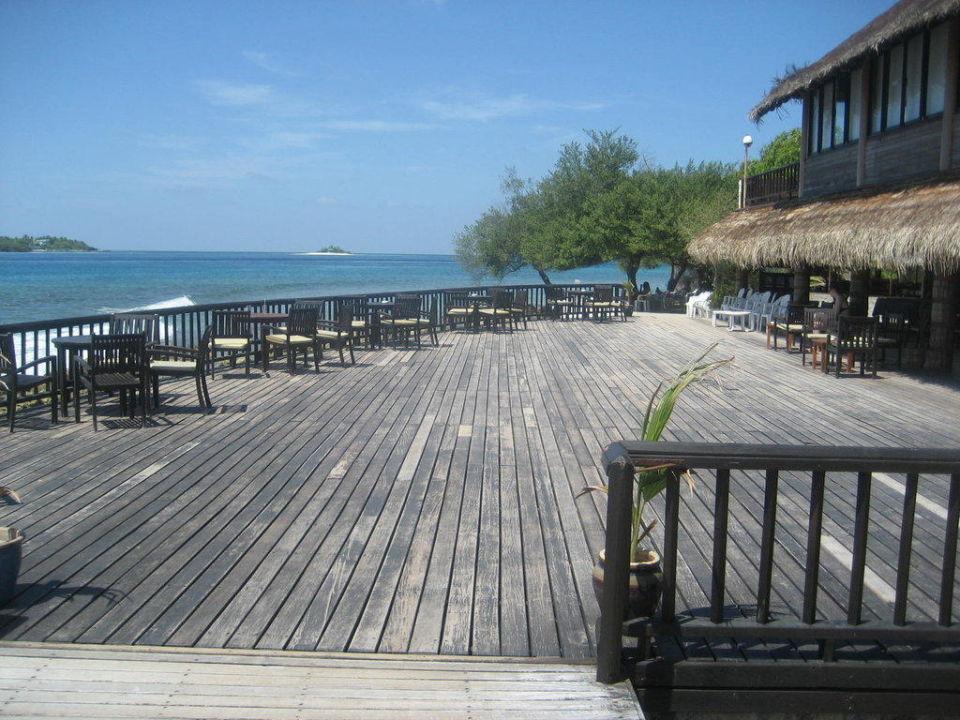 Surfer-Bar Cinnamon Dhonveli Maldives