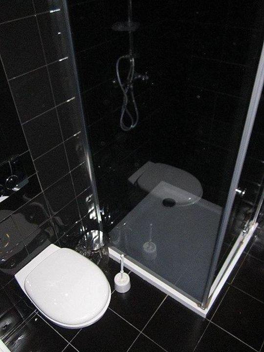 Badezimmer / WC / Dusche\