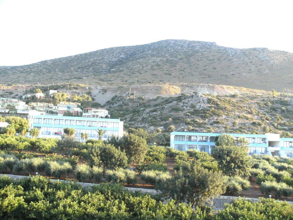 Ausblick von Balkon Hotel Royal Belvedere