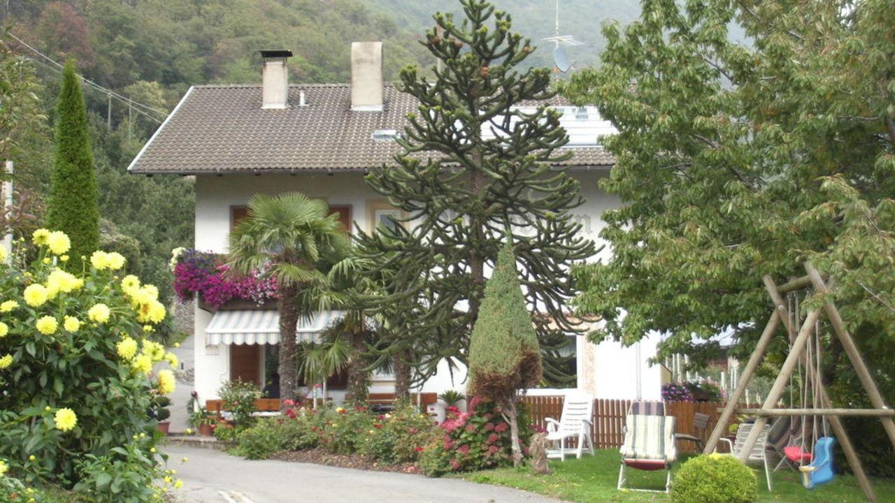 Haus mit Palme Oberbrunnhof Ferienwohnungen