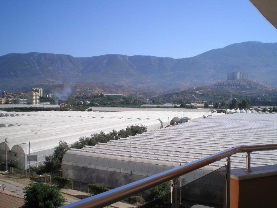 Вид с балкона. First Class Hotel
