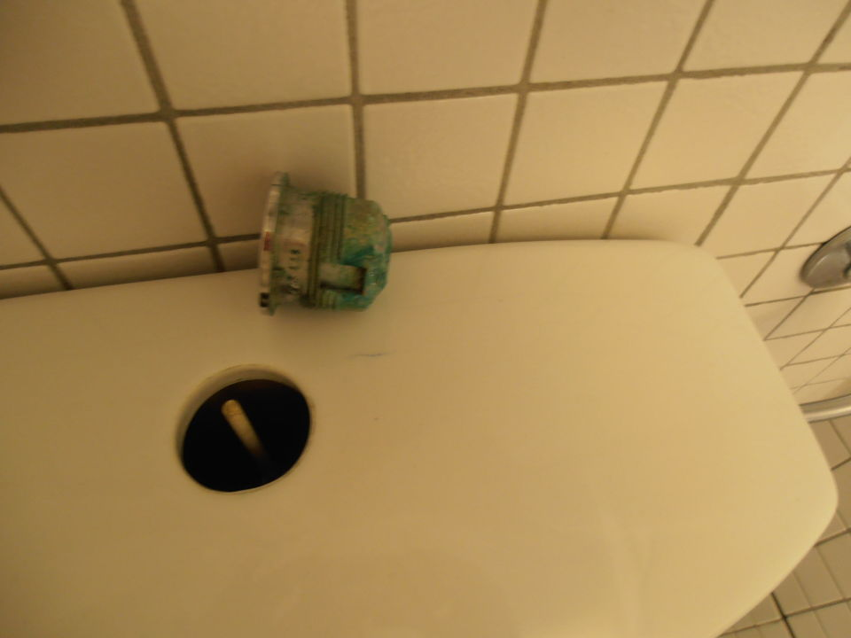 bild toilettensp lung zu steigenberger hotel conti. Black Bedroom Furniture Sets. Home Design Ideas