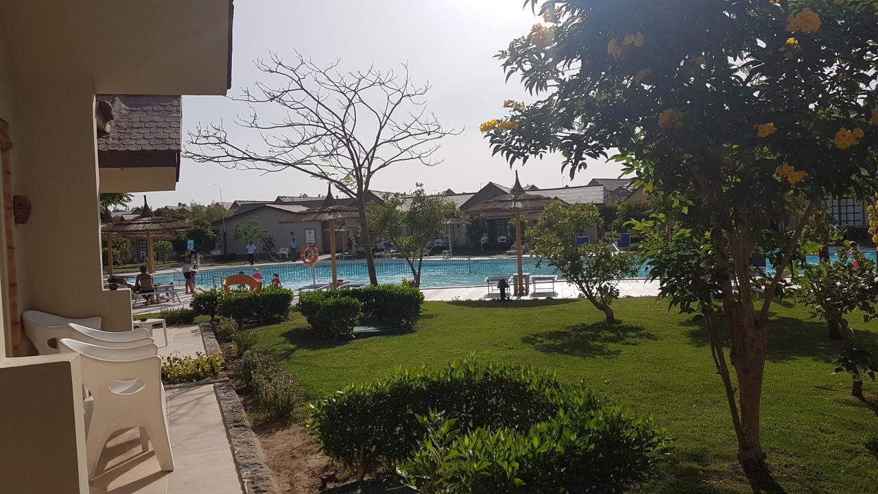 ausblick von der terrasse direkt auf den pool jungle aqua park hurghada holidaycheck. Black Bedroom Furniture Sets. Home Design Ideas