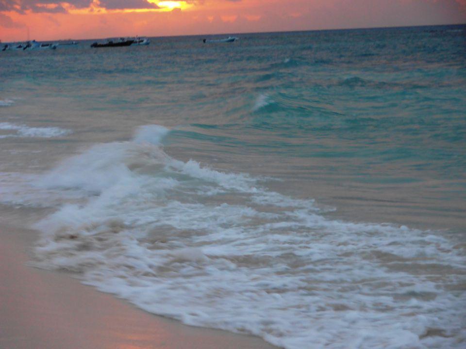 bild liege bett am strand zu mahekal beach resort in playa del carmen playacar. Black Bedroom Furniture Sets. Home Design Ideas