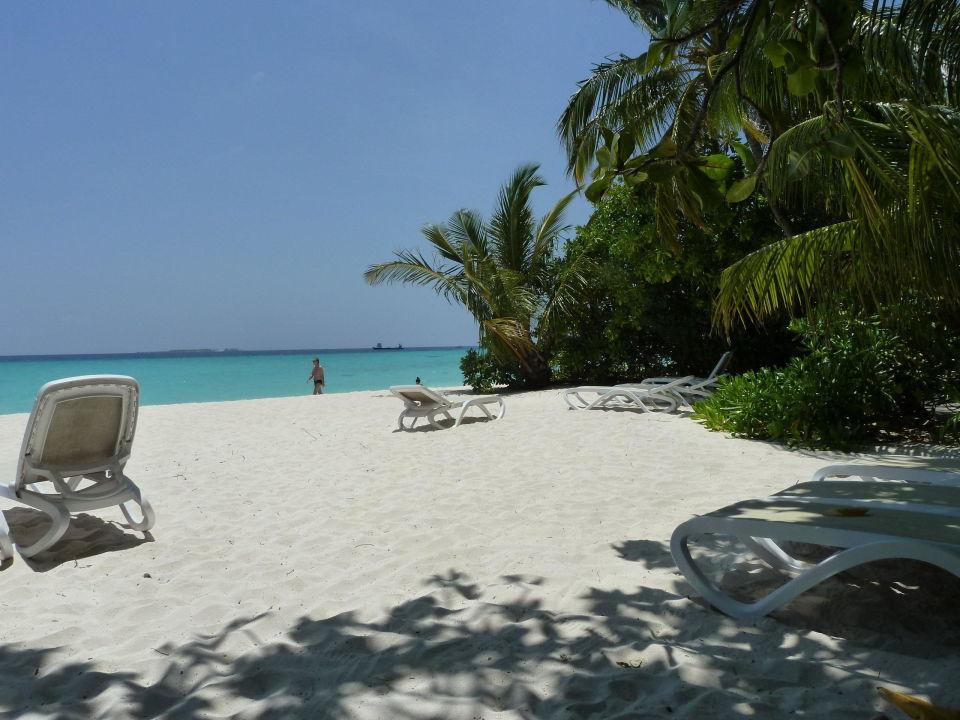 Man Kann Auch Im Schatten Braun Werden Kuramathi Maldives Rasdhoo