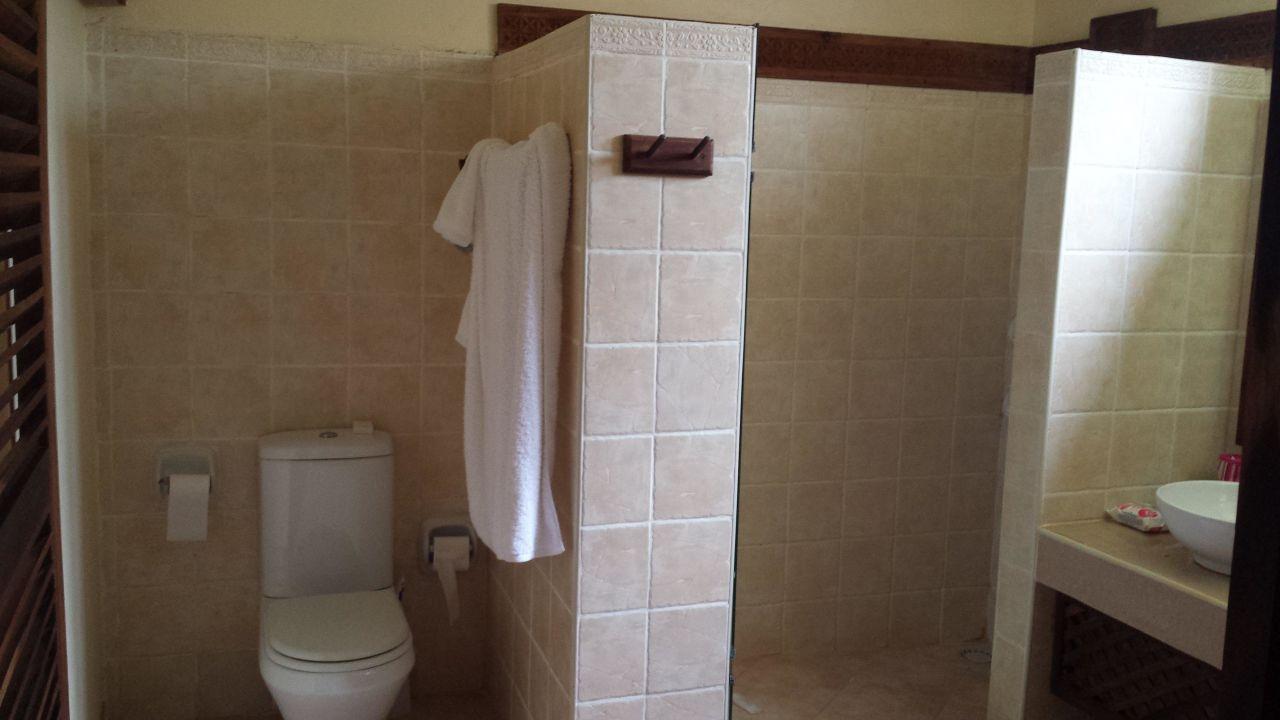 Badezimmer: große Dusche\