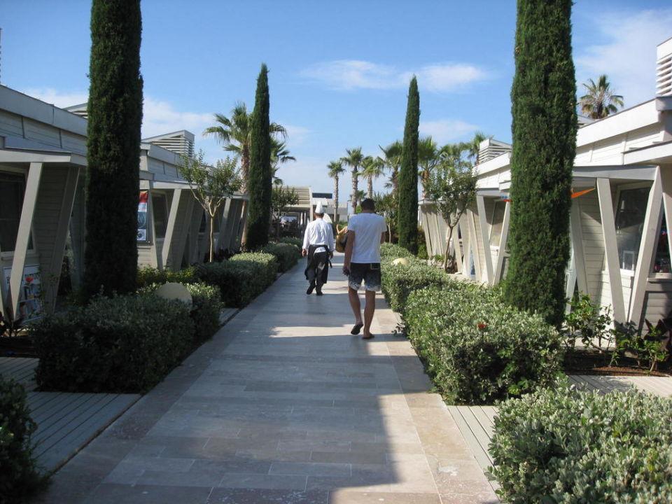 Hotel Susesi de Luxe & Spa Susesi Luxury Resort