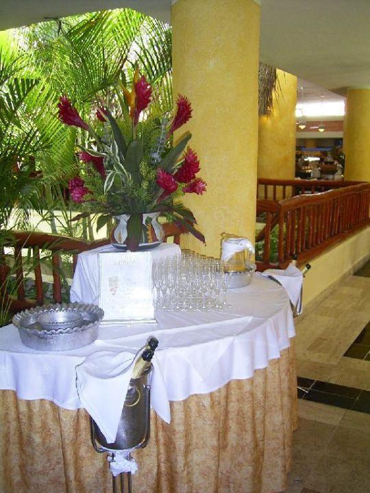 Hauptrestaurant - Sekt Grand Bahia Principe Tulum