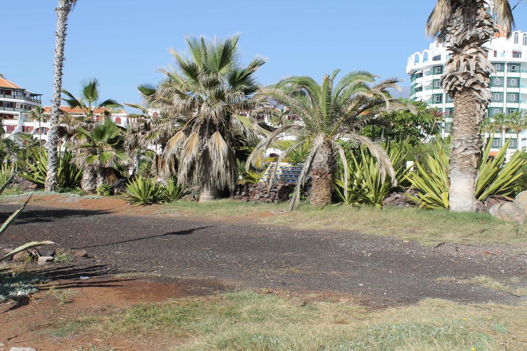Bild gartenanlage aussen park santiago zu apartamentos parque santiago 4 in playa de las americas - Apartamentos parque santiago ...