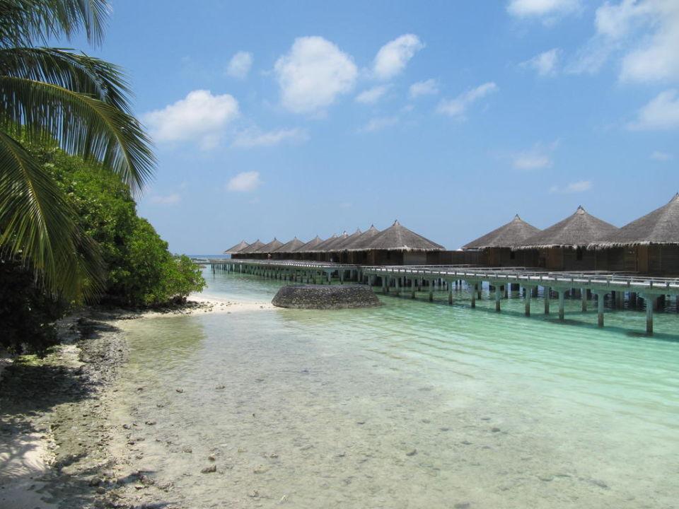 Over Water Bungalows Hotel Kuramathi Island Resort