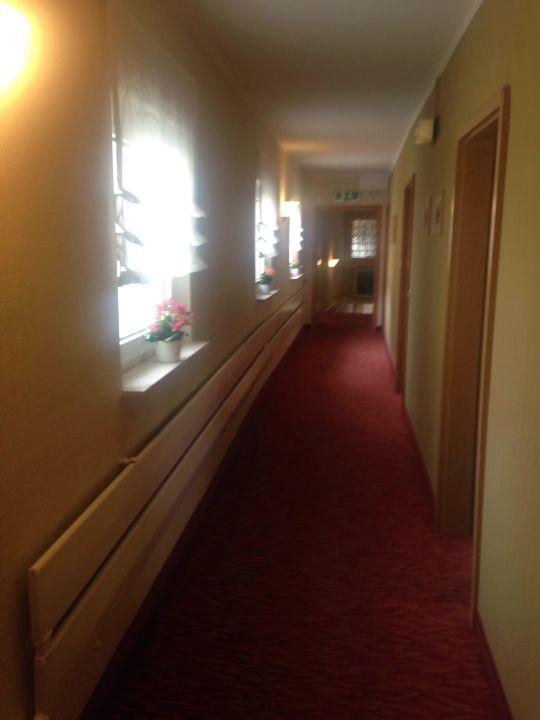 bild flur zu hotel wilder mann in aschaffenburg. Black Bedroom Furniture Sets. Home Design Ideas
