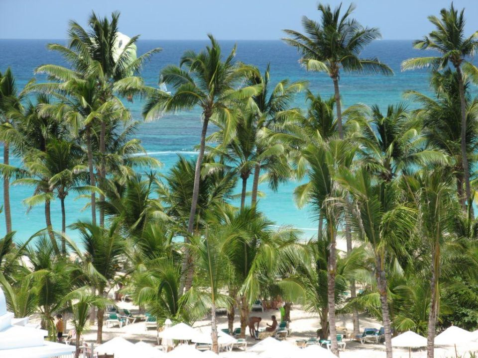 Schattenplätze Hotel Riu Palace Punta Cana