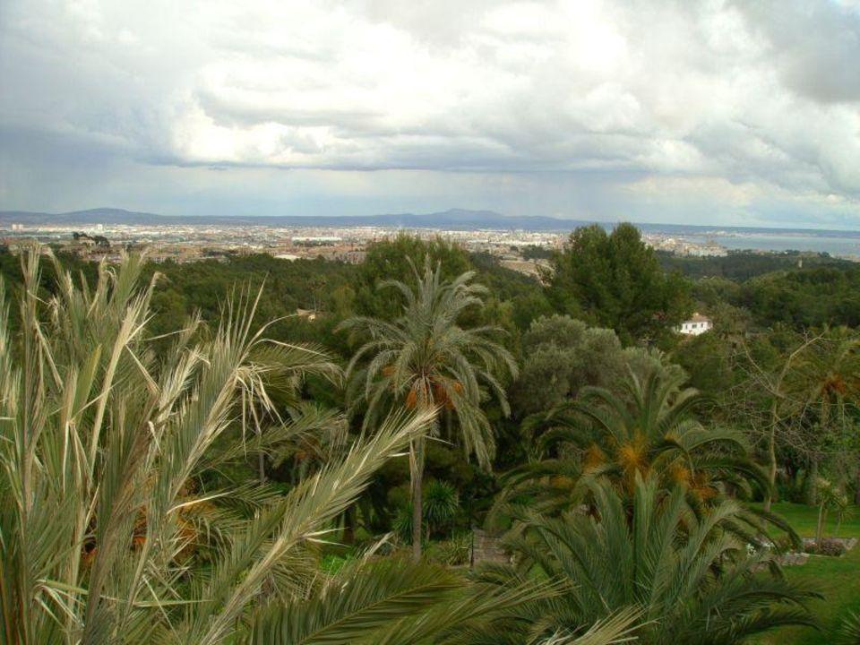 Blick über den Garten nach Palma Castillo Son Vida