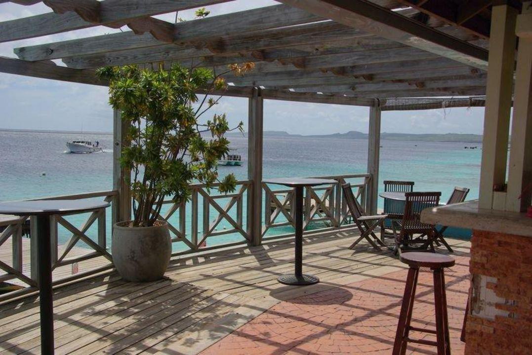 Bar mit Blick aufs Meer Hotel Captain Don's Habitat