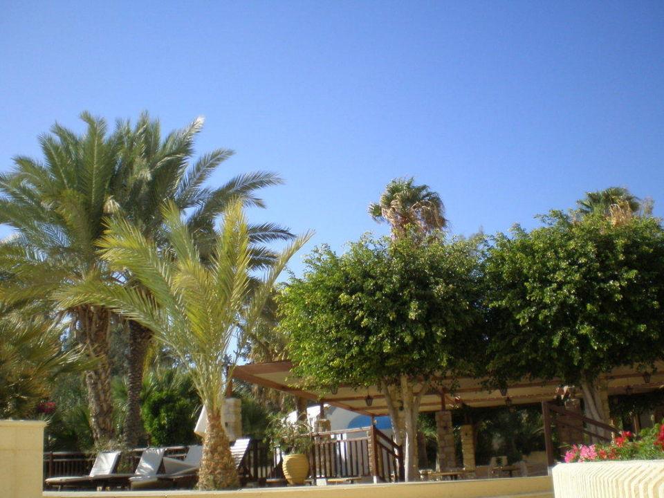 Die wunderschöne und gepflegte Gartenanlage Elias Beach Hotel