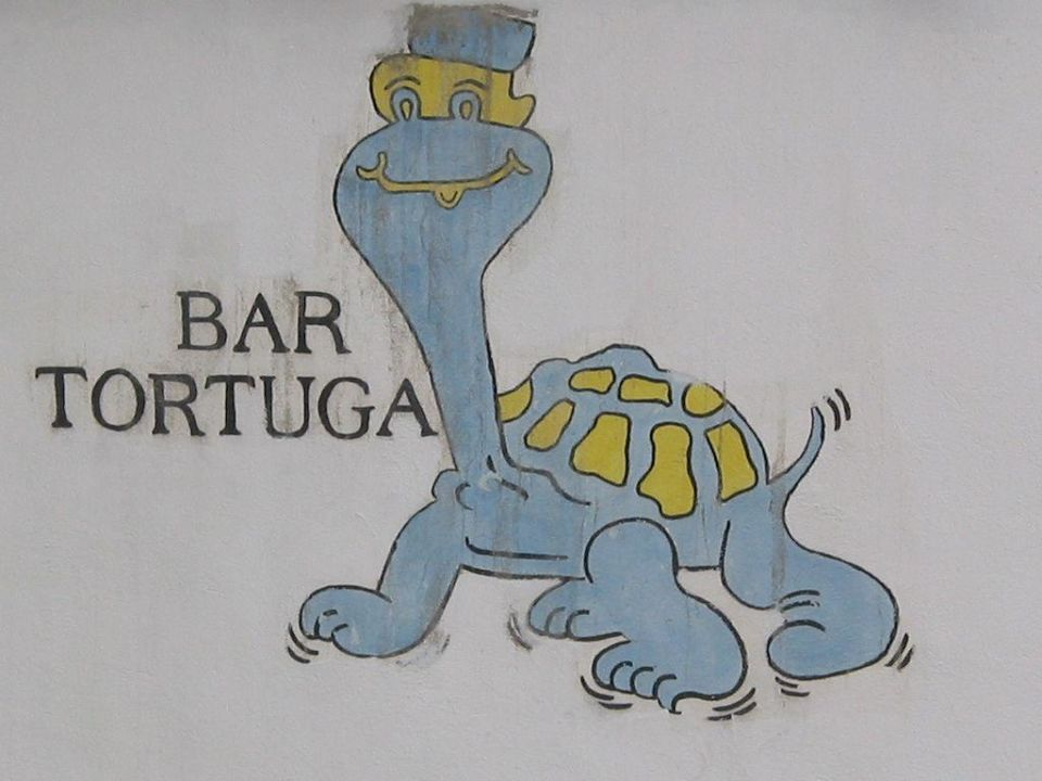 Die Bar Tortuga Am Strand Hotel Meninx