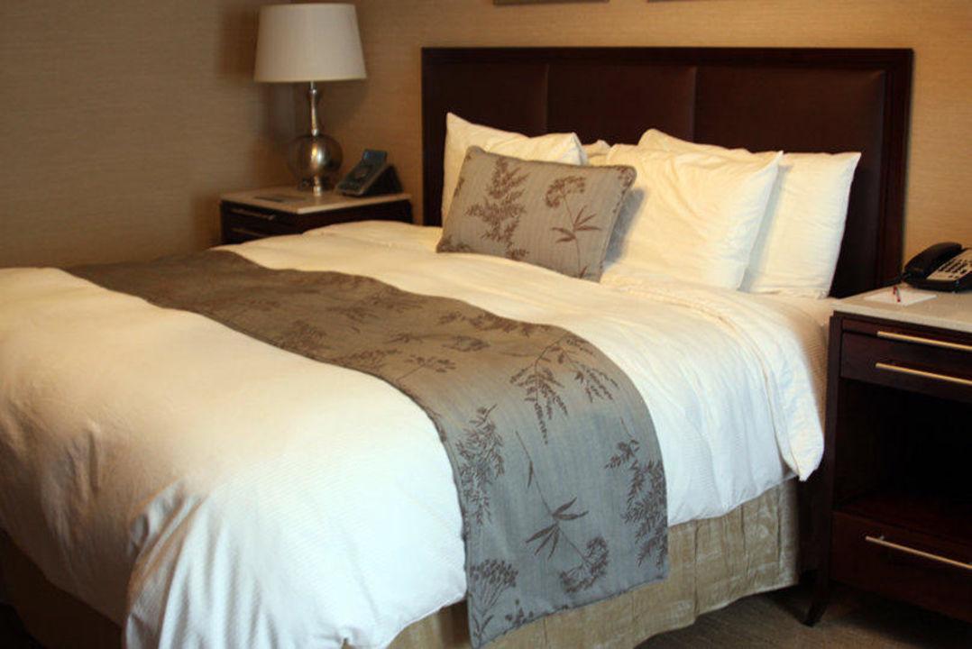 Queen Size Bett Im Queen Executive Room Hotel Belvedere New York