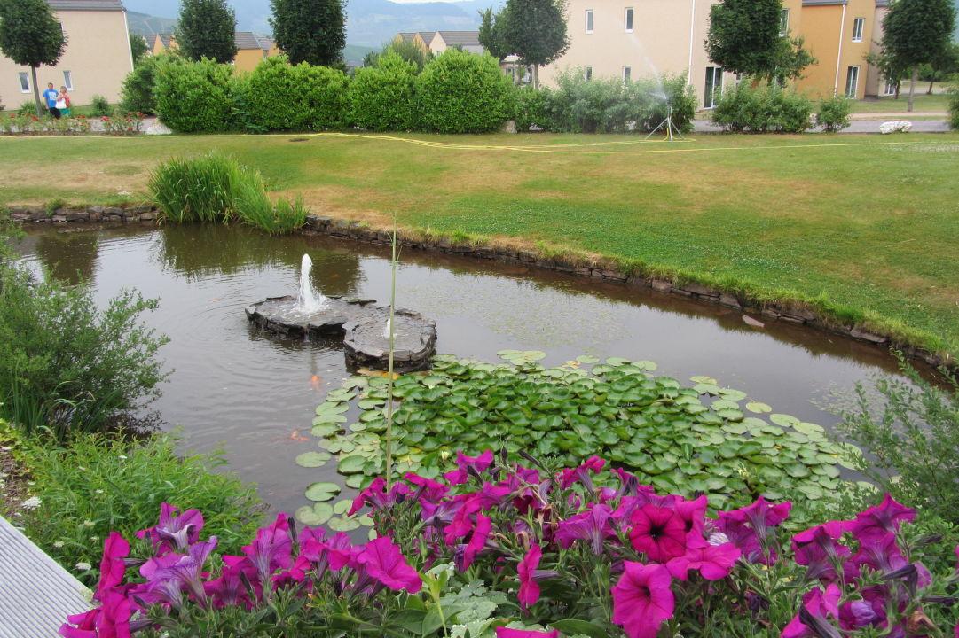Bild jeder hat seine eigene tisch zu hotel eurostrand for Teich mit fischen
