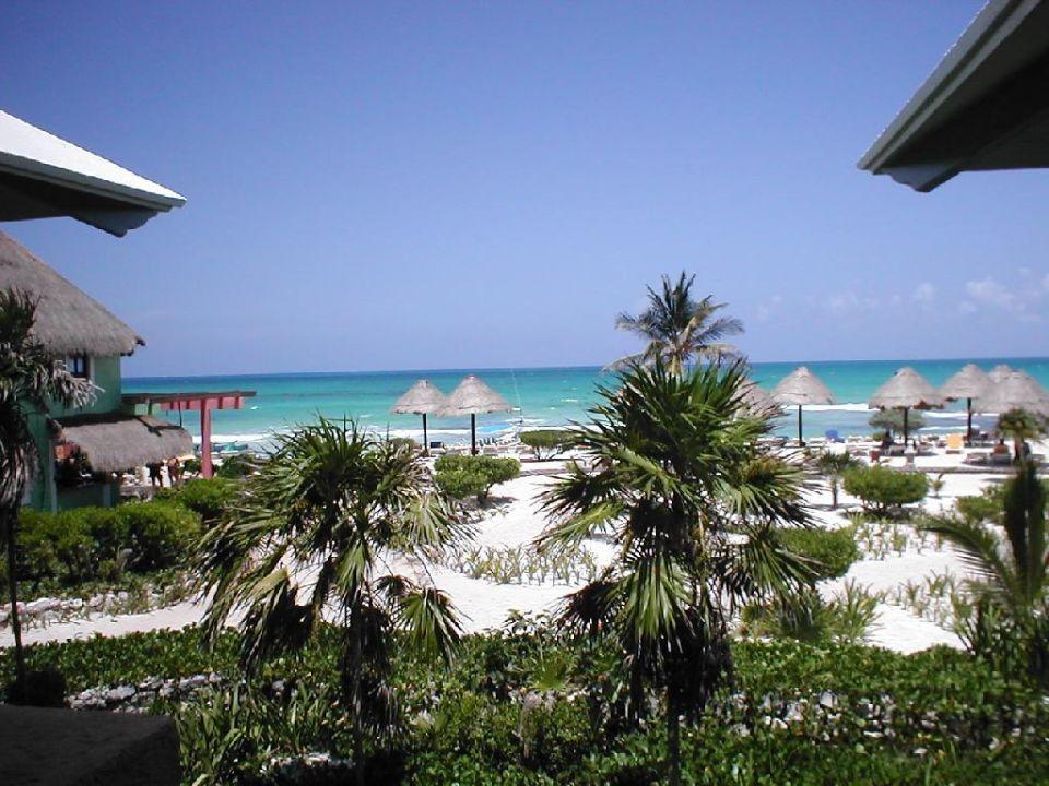 Blick auf den Strand IBEROSTAR Hotel Paraiso del Mar