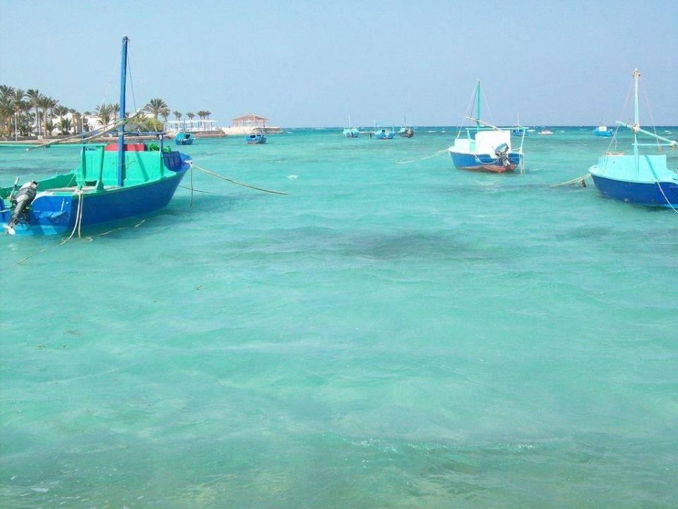 Blaue Lagune Festival Shedwan Golden Beach Resort (Vorgänger-Hotel - existiert nicht mehr)