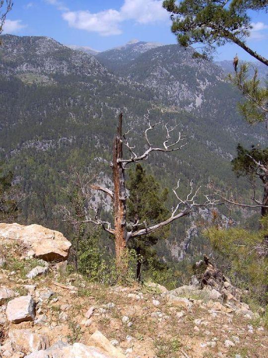 Taurusgebirge Kirman Arycanda de Luxe