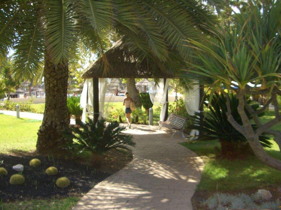 Weg zum Pool Meliá Tamarindos